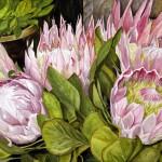 Diane Sicheneder  Painting, Booth: 006