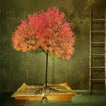 Mari Pruks, Digital Art, Booth: 106